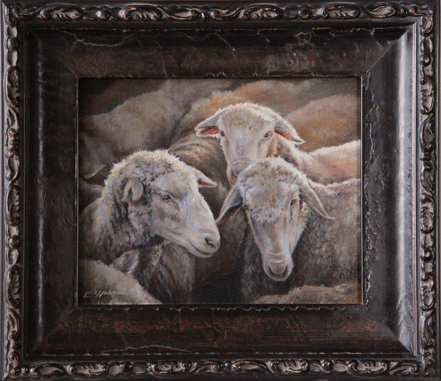 3 Sheep Framed Web